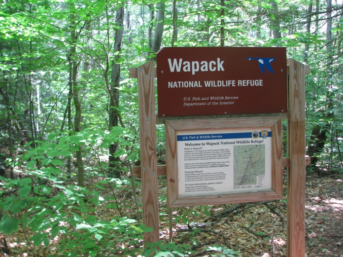 Wapack. Peterborough NH. Photo By Colleen Ann.