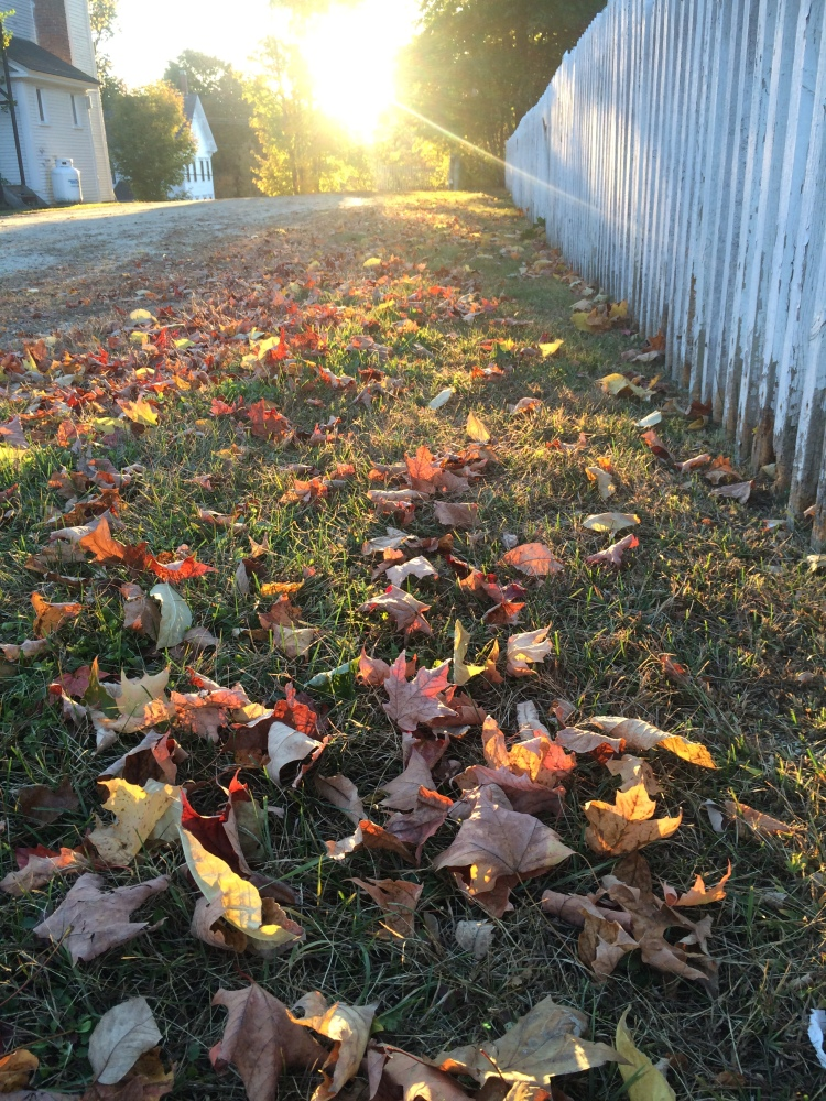The End of Fall. Greenfield, NH. Photo By Colleen Ann.