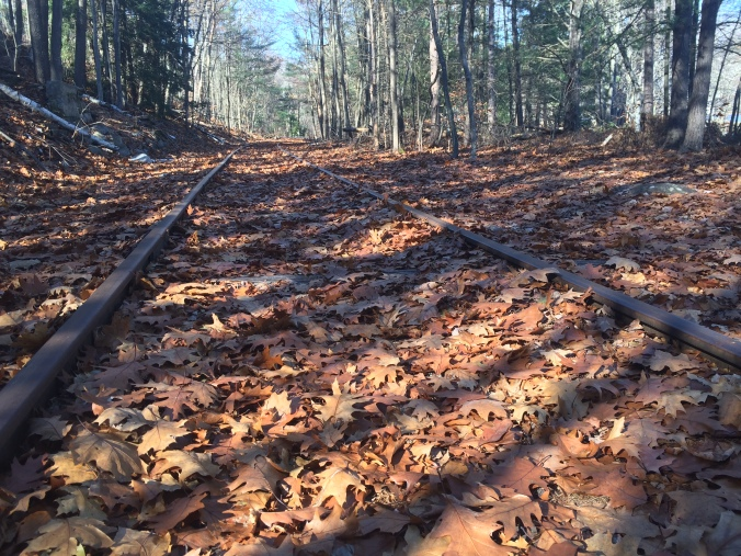 Old Tracks. Photo By Colleen Ann.
